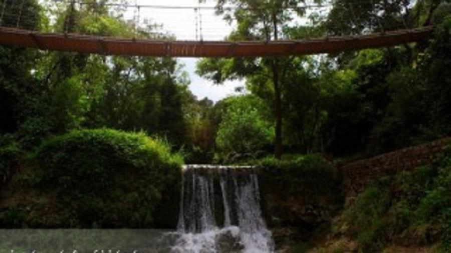 თბილისში სინათლის ფესტივალი გაიმართება