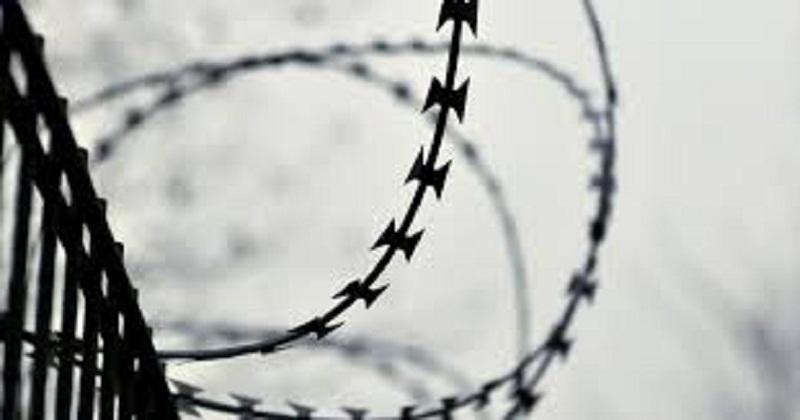 """თავისუფლების მოედანზე აქცია - """"მშვიდობა ომზე მეტია"""" იწყება"""
