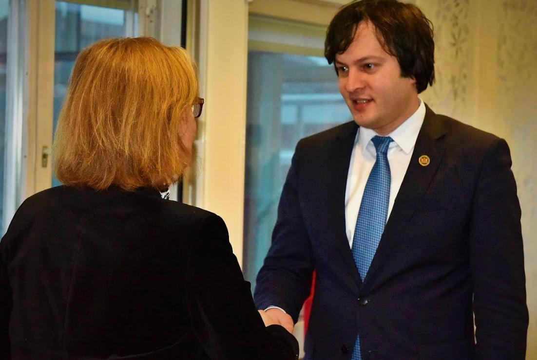 ირაკლი კობახიძე შვედეთის საერთაშორისო განვითარების სააგენტოს გენერალურ დირექტორს შეხვდა