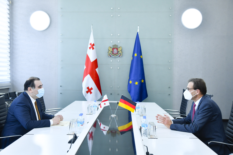 მიხეილ ჩხენკელმა გერმანიის ელჩთან ქუთაისის საერთაშორისო უნივერსიტეტის განვითარების საკითხები განიხილა