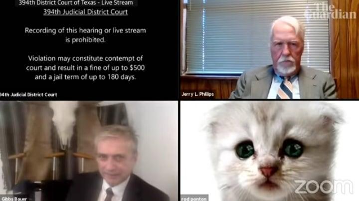 ონლაინ სასამართლო პროცესზე ადვოკატი კატის ვირტუალური ნიღბით წარდგა