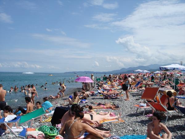 ბათუმის პლაჟები მართვაში ბრენდულ სასტუმროებს გადაეცემა
