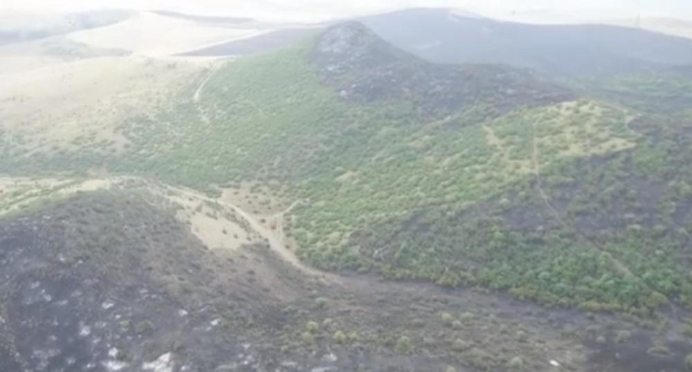 რა ვითარებაა სადახლოს გორაკზე ხანძრის ლოკალიზების შემდეგ (ვიდეო)