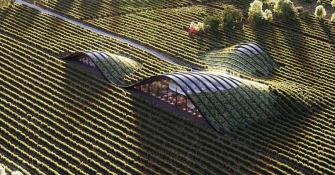 შილდა მწვანე არქიტექტურის ნიმუშებს შორის მსოფლიოში საუკეთესოა