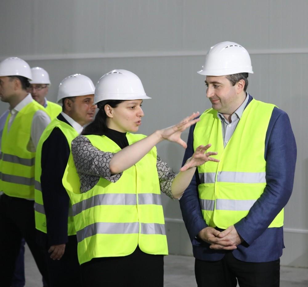 ევროპის ბირთვული კვლევების ცენტრში საქართველოში დამზადებული კონსტრუქცია იგზავნება - მარიამ ჯაში