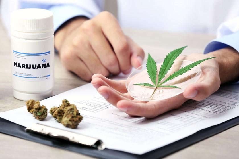 ბრაზილიაში მარიხუანისგან დამზადებული მედიკამენტების გამოყენება დაუშვეს