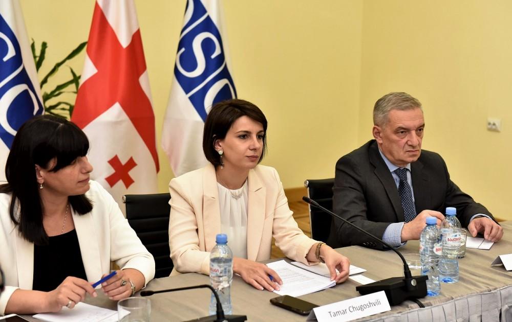 თამარ ჩუგოშვილი ევროპის უსაფრთხოებისა და თანამშრომლობის ორგანიზაციის (ეუთო) ელჩებს შეხვდა