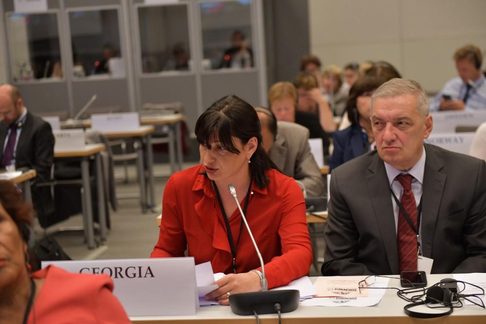 მინდა ხაზი გავუსვა რუსეთის პასუხისმგებლობას ოკუპირებულ აფხაზეთსა და ცხინვალის რეგიონში ადამიანის უფლებებისა და თავისუფლებების დაცვისა და საერთაშორისო ორგანიზაციების დაშვების აუცილებლობის შესახებ - სოფიო ქაცარავა