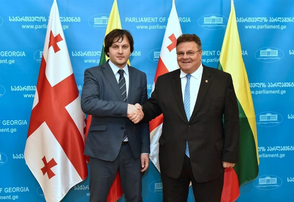 ირაკლი კობახიძე ლიეტუვას რესპუბლიკის საგარეო საქმეთა მინისტრს შეხვდა