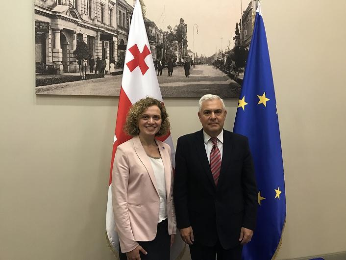 თამარ ხულორდავა რუმინეთის სენატის ევროპულ საქმეთა კომიტეტის თავმჯდომარეს შეხვდა