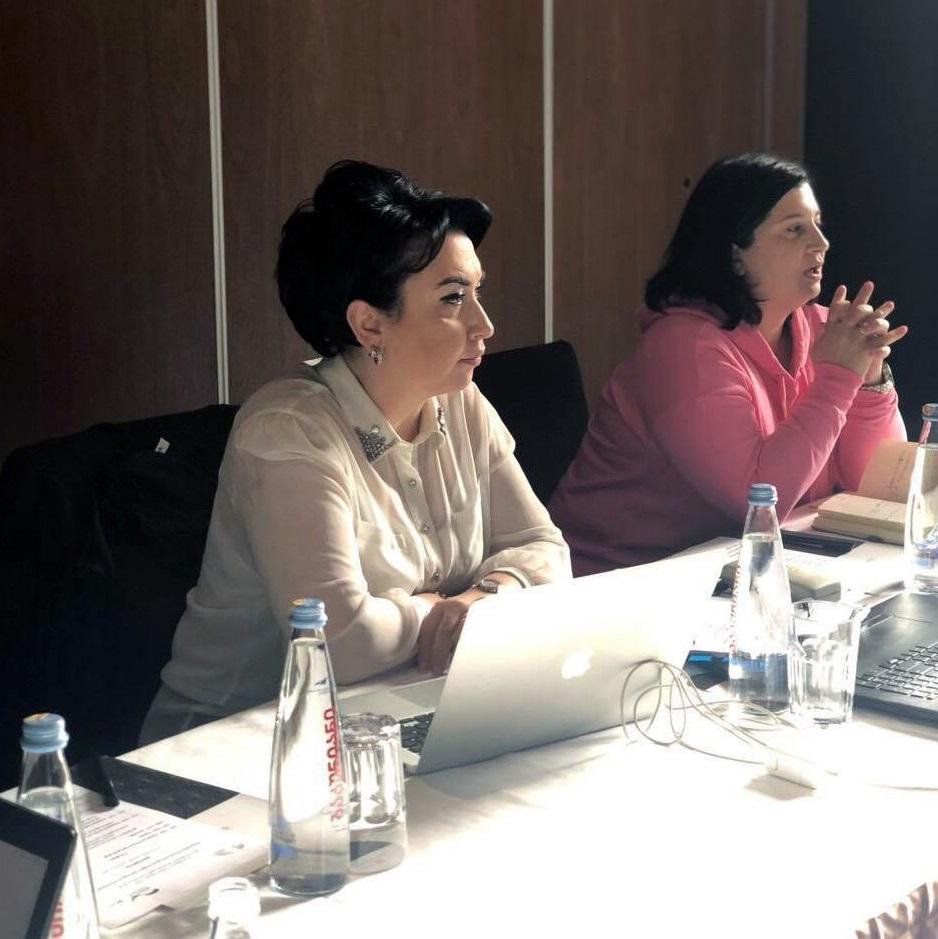 პარლამენტის ღია მმართველობის (OGP) სამუშაო ჯგუფი ეკა ბესელიას ხელმძღვანელობით მოქალაქეთა ჩართულობის ცენტრის შექმნაზე მუშაობას განაგრძობს