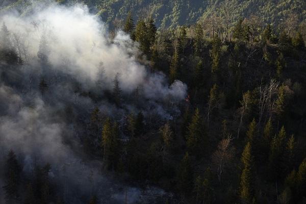 ბორჯომის ხეობაში, ტყის მასივში გაჩენილი ხანძრის ორივე კერა ლოკალიზებულია