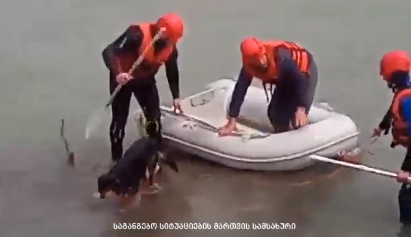 მაშველებმა ახალგაზრდა კაცი და ძაღლი გადაარჩინეს (ვიდეო)