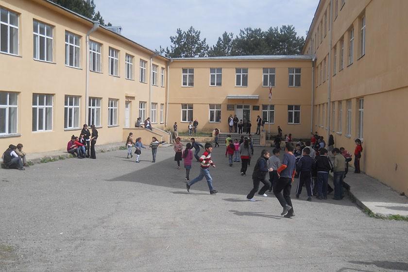 საქართველოში 2082 საჯარო სკოლიდან ადაპტირებული მხოლოდ 17 სკოლაა