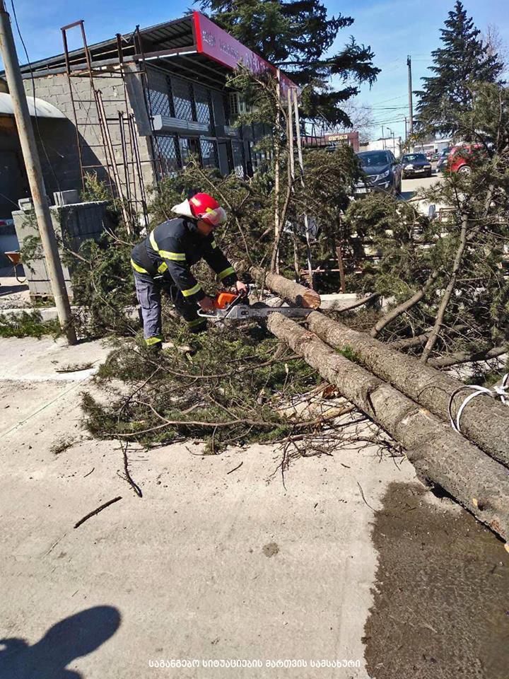 იმერეთში ძლიერმა ქარმა 17 სახლის სახურავი და 15 ხე დააზიანა