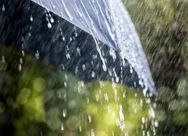 ტემპრეტურის ვარდნა და წვიმა - ამინდის პროგნოზი