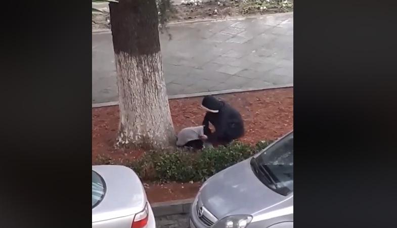 გოგომ ძაღლს საკუთარი მაისური ჩააცვა (ვიდეო)