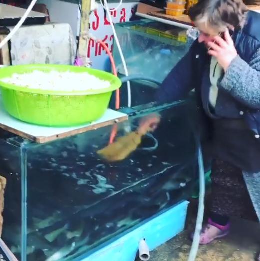 დეზერტირების ბაზარში გადაღებული ვიდეო, რომელმაც მოქალაქეების აღშფოთება გამოიწვია