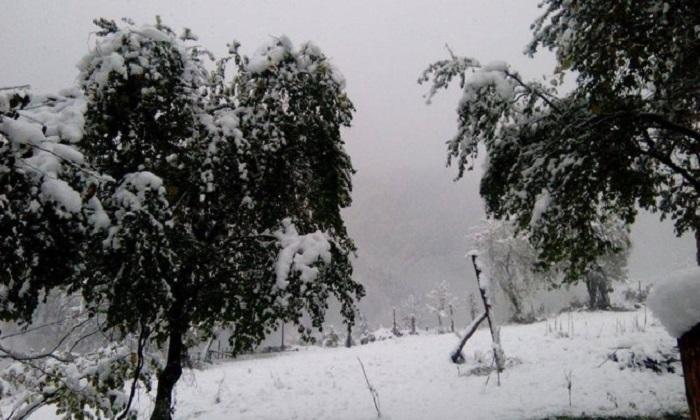 ძლიერი თოვა ხულოში - მოსახლეობის ნაწილი გარესამყაროს მოწყვეტილია