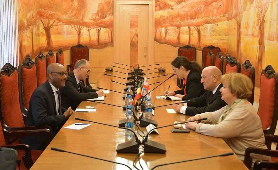 თემურ ჭკუასელი ეთიოპიის ფედერაციული დემოკრატიული რესპუბლიკის არარეზიდენტ ელჩს შეხვდა