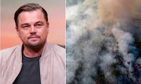ბრაზილიის პრეზიდენტი ლეონდარდო დიკაპრიოს ამაზონის ტყეებში ცეცხლის გაჩენაში ადანაშაულებს