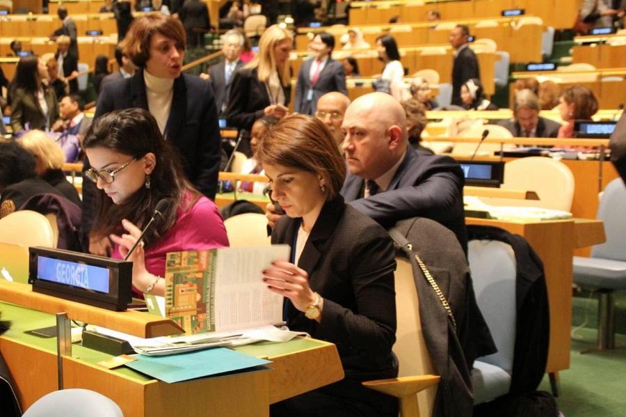 თამარ ჩუგოშვილი ნიუ-იორკში, UNDP-ს ხელმძღვანელს აქიმ შტეინერს შეხვდა