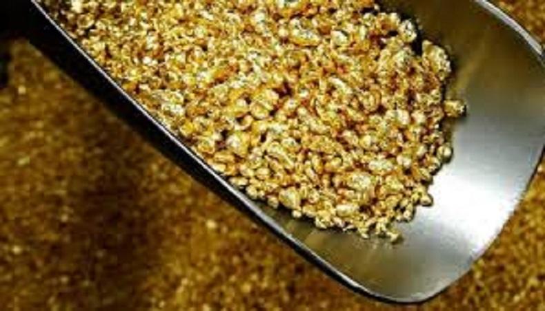 ინდოეთში გეოლოგებმა 3 ათასი ტონა ოქრო იპოვეს