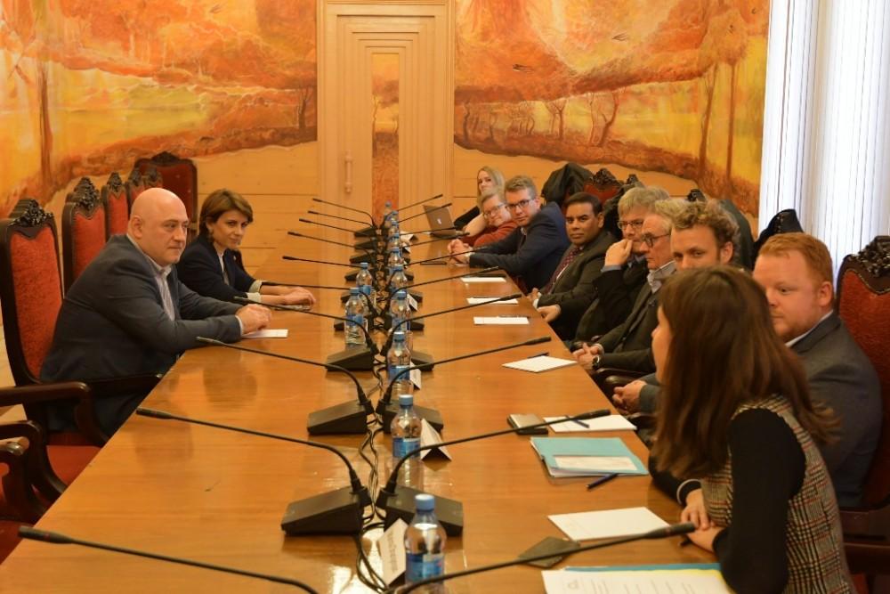 თამარ ჩუგოშვილი დემოკრატიისა და სოლიდარობისთვის ევროპული ფორუმის წარმომადგენლებს შეხვდა