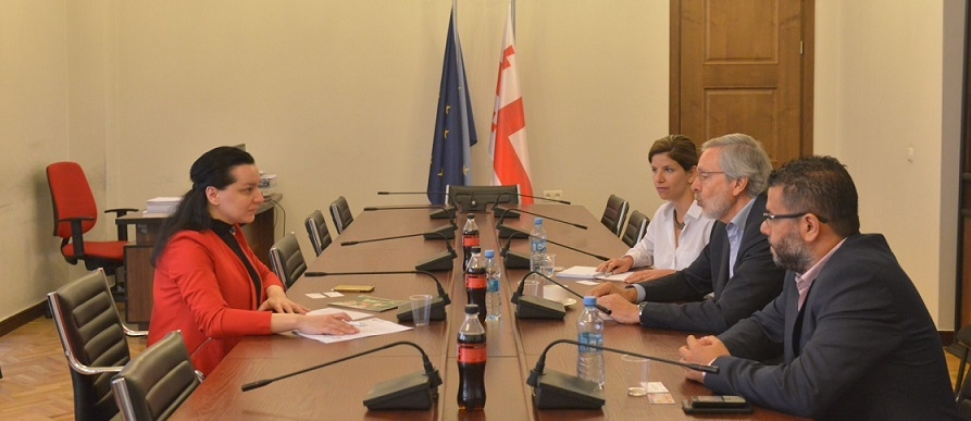 მარიამ ჯაში: ქართული სასკოლო სისტემა უნდა გავხადოთ საერთაშორისო სივრცის ნაწილი