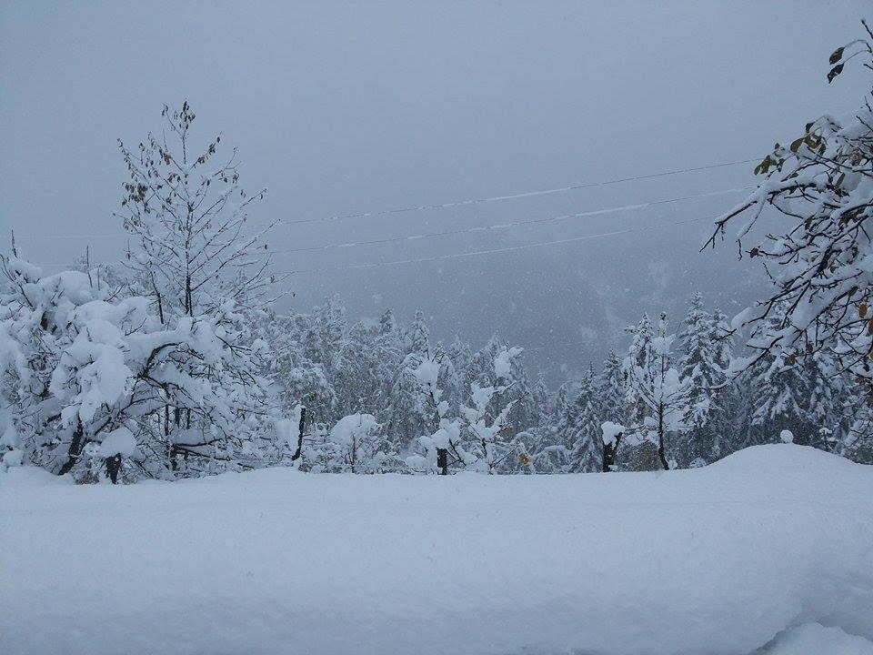 თოვლი და ძლიერი ქარი - უახლოესი დღეების ამინდის პროგნოზი
