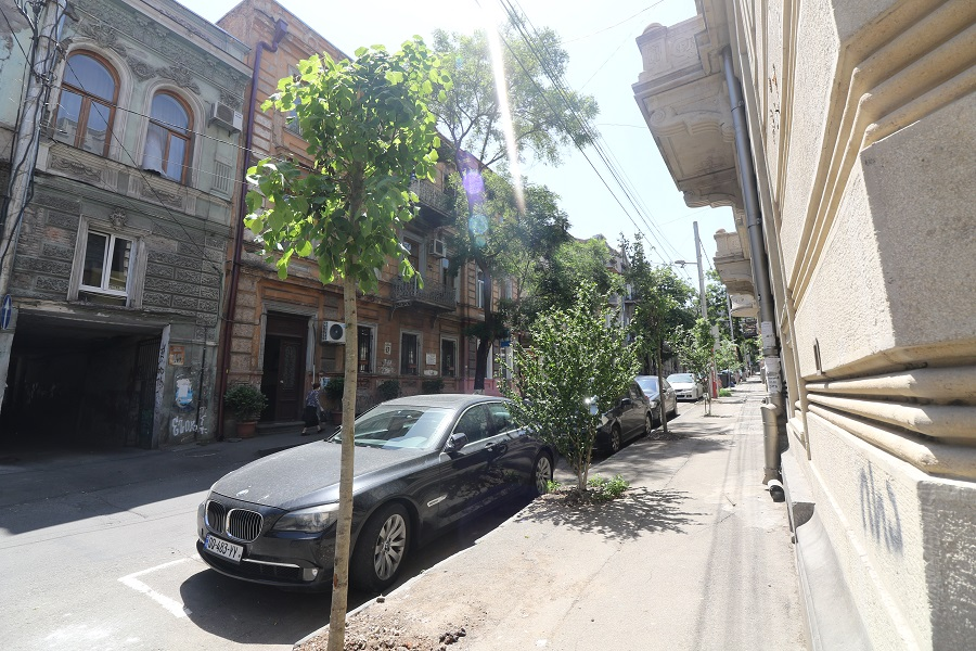 მთაწმინდის გამგეობამ რამდენიმე ქუჩაზე გამწვანების სამუშაოები ჩაატარა